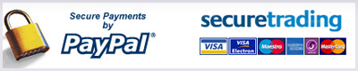 PayPal secure payments logo